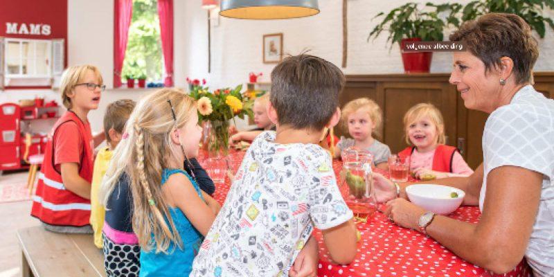 Mam's Kinderopvang Werken Vacature 3